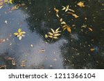 autumn background. autumn... | Shutterstock . vector #1211366104