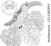 coloring pages. coloring book... | Shutterstock .eps vector #1211382991