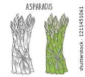 hand drawn asparagus. template... | Shutterstock . vector #1211451061