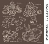 collection of nuts   pistachio  ... | Shutterstock .eps vector #1211619901