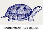 Ear Tortoise. Doodle Style
