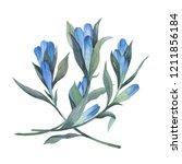 floral arrangement in... | Shutterstock . vector #1211856184