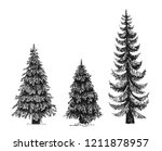 fir tree  christmas tree or... | Shutterstock .eps vector #1211878957