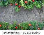 taxus baccata with ripe red... | Shutterstock . vector #1211910547