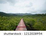 mangrove forest walkway | Shutterstock . vector #1212028954