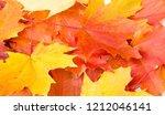 texture background  pattern.... | Shutterstock . vector #1212046141