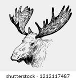 moose head. hand drawn sketch... | Shutterstock .eps vector #1212117487