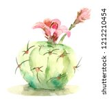 hand drawn watercolor succulent ...   Shutterstock . vector #1212210454