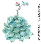 watercolor hand drawn cactus in ... | Shutterstock . vector #1212210457