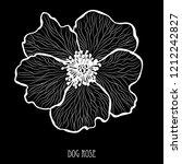 decorative dog rose flower ... | Shutterstock . vector #1212242827