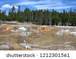bacteria mat near surprise pool ... | Shutterstock . vector #1212301561