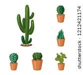 vector illustration of cactus... | Shutterstock .eps vector #1212421174