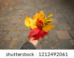 Autumn Bouquet Of Red  Yellow...