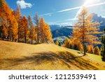 splendid autumn landscape in... | Shutterstock . vector #1212539491
