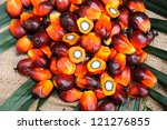 Close Up Of Palm Oil Seeds ...