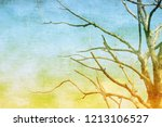 vintage textured bare tree in... | Shutterstock . vector #1213106527