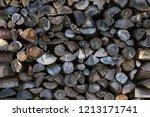 background many felled trees | Shutterstock . vector #1213171741