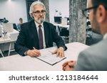 job interview  businessman... | Shutterstock . vector #1213184644