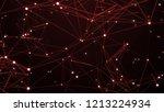 3d render plexus like... | Shutterstock . vector #1213224934