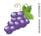 grapes fruit isolated | Shutterstock .eps vector #1213238671