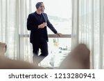 portrait of mature businessman... | Shutterstock . vector #1213280941