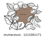 isolated vector set of nuts on... | Shutterstock .eps vector #1213381171