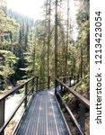 catwalks walking trails in... | Shutterstock . vector #1213423054