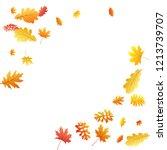 oak  maple  wild ash rowan... | Shutterstock .eps vector #1213739707