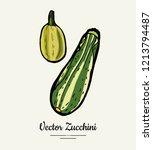 zucchini   hand drawn...   Shutterstock .eps vector #1213794487