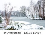 the snow falls on the bare... | Shutterstock . vector #1213811494