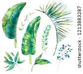 set of watercolor exotic... | Shutterstock . vector #1213883287