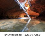 Subway Log, Zion National Park - stock photo