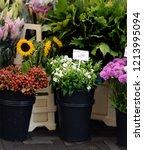 the famous amsterdam flower... | Shutterstock . vector #1213995094