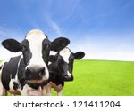 Cow On Green Grass Field With...