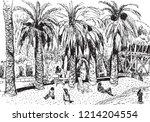 black image of a mediterranean... | Shutterstock .eps vector #1214204554