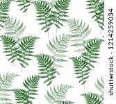 fern frond herbs  tropical... | Shutterstock .eps vector #1214259034