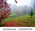 red autumn forest mist... | Shutterstock . vector #1214263744