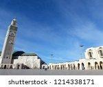 the extravagant beautiful... | Shutterstock . vector #1214338171