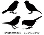 ,bird,black,clip art,collection,feather,illustration and painting,isolated,silhouette,small,sparrow,symbol,vector,white