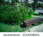 minotaur weeping willow tree....   Shutterstock . vector #1214438041