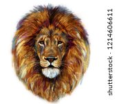Digital Painting Of Male Lion...