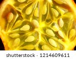 background of kiwano melon ... | Shutterstock . vector #1214609611