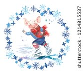 Pig In Sweater On Skates. 2019...