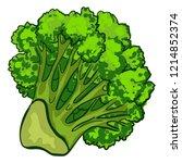 fresh broccoli icon. cartoon of ... | Shutterstock .eps vector #1214852374