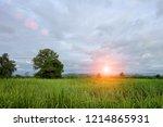 morning sunrise over the green... | Shutterstock . vector #1214865931