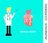 medical internal organs body... | Shutterstock .eps vector #1215028201