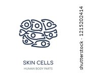 skin cells icon. skin cells... | Shutterstock .eps vector #1215202414