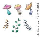 watercolor hand drawn sketch of ...   Shutterstock . vector #1215257344