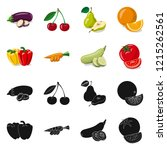 vector illustration of... | Shutterstock .eps vector #1215262561