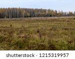 autumn landscape. dark clouds... | Shutterstock . vector #1215319957